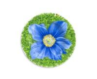 Taitu PRATI ITALIANI Teller flach Ø 21,5 cm (blaue Blüte)